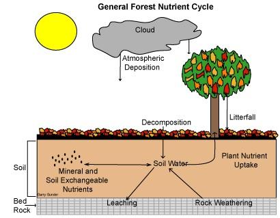 Zemědělská půda definice